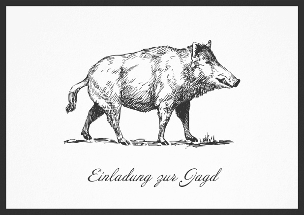 Hunting invitation card with illustrated strong wild boar Black.