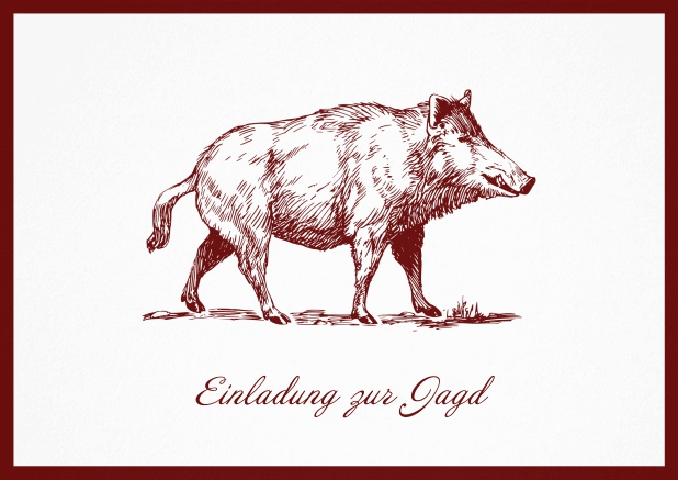 Hunting invitation card with illustrated strong wild boar Red.