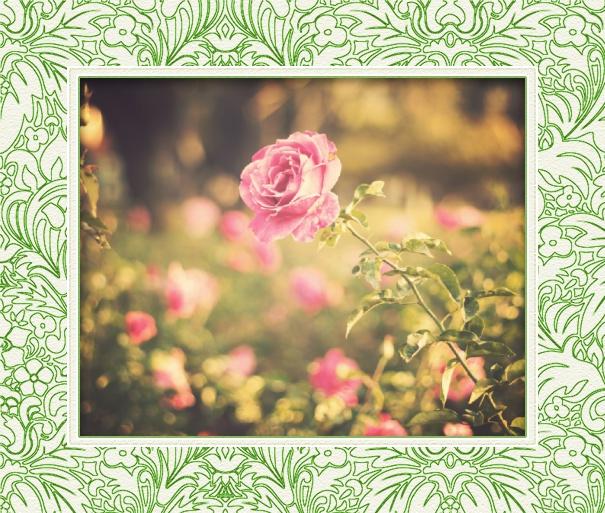 Online Foto Geburtsanzeige Mit Grünem Blumenrahmen